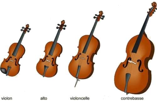 instruments cordes frottées