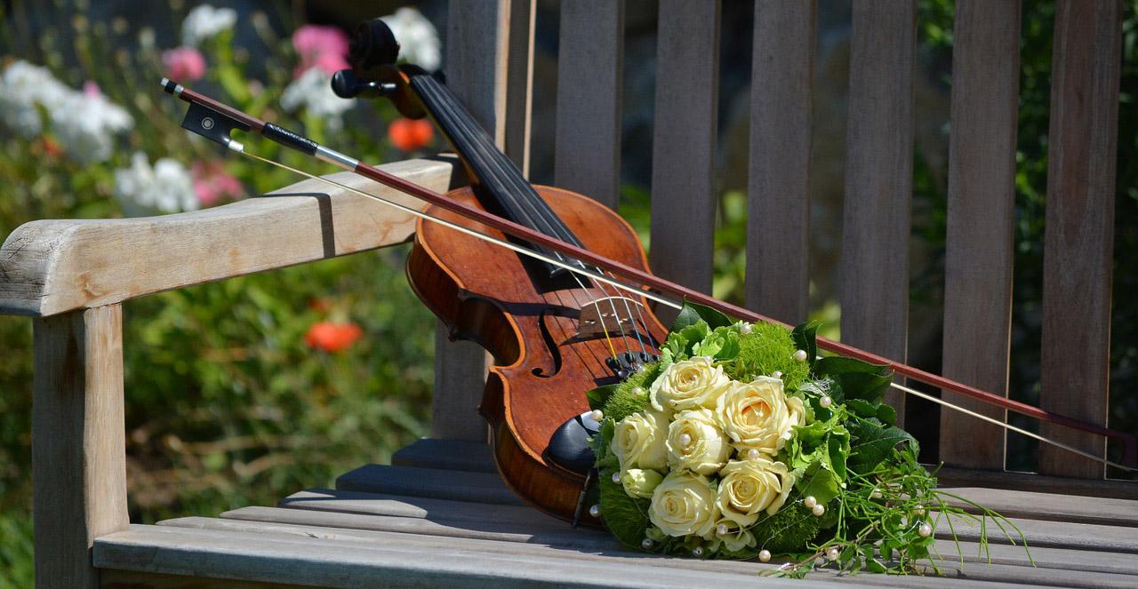 violon-bouquet-fleurs