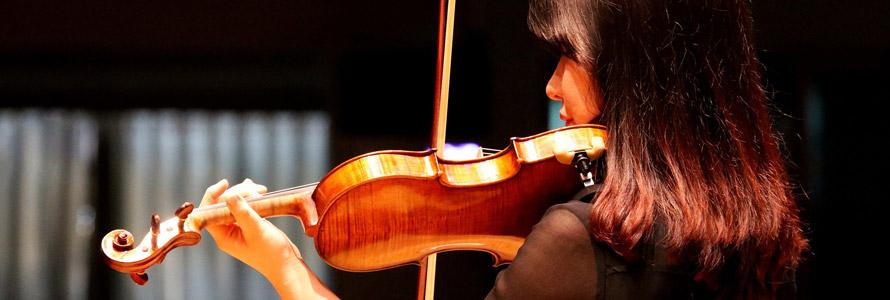 violon avec ou sans coussin
