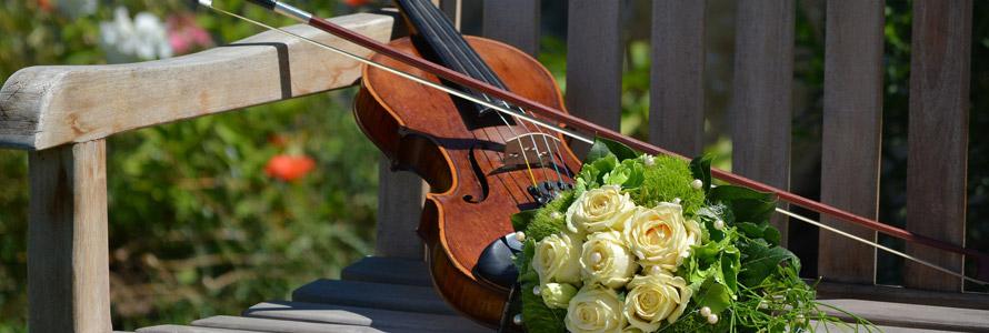 Choisir le violon