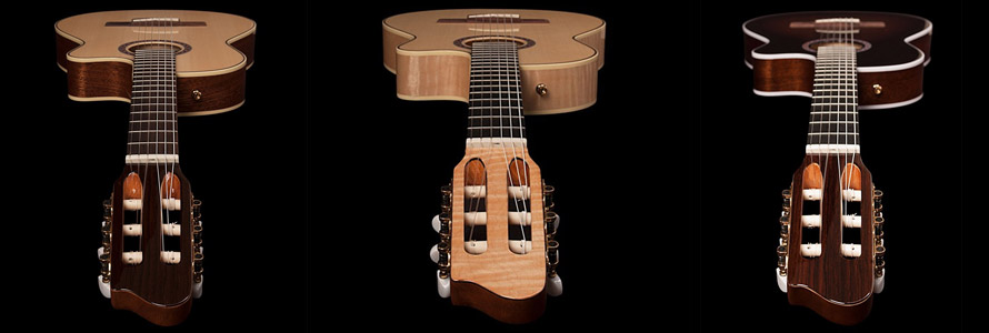 Essences de bois de guitares