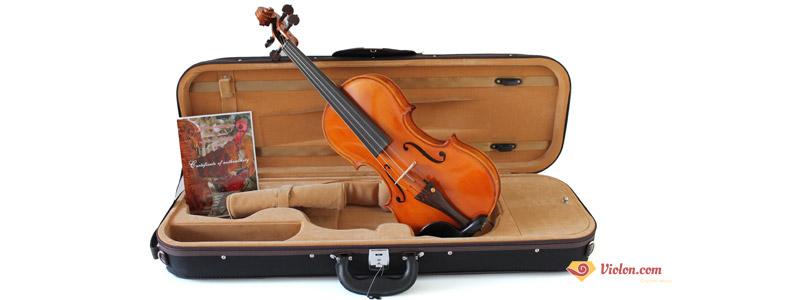 Etui violon unique SJ3