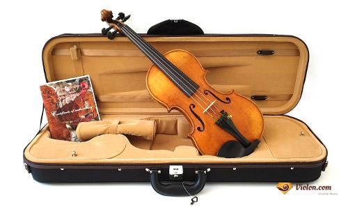 étui violon