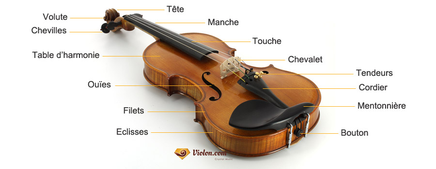 Composition du violon