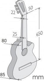 Dimensions de l'Iberia Ziricote CTW-E8