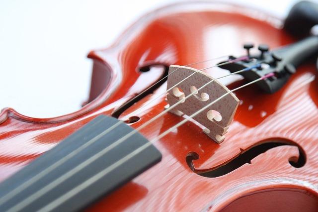 cordes-violon