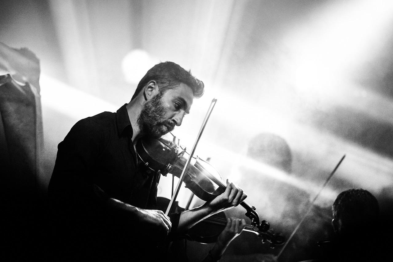 violon adulte