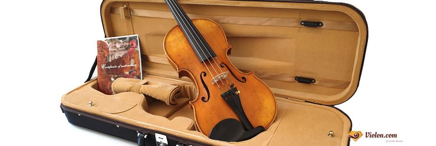 Violon unique Maestro SJ Guarneri