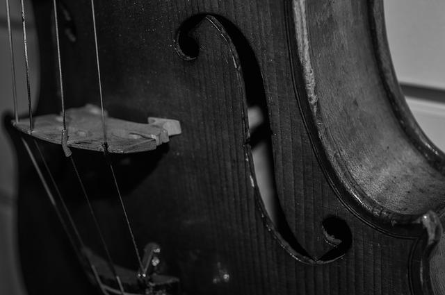 violon-noir-blanc