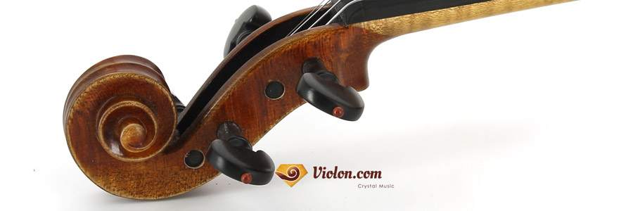 volute du violon acoustique